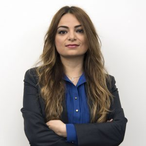 Professor Feyza Engin