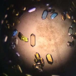 Crystal solved by crystallography in the Rayment Lab