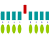 Cartton for RNA protein complexes